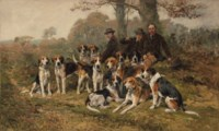 The New Forest Buckhounds